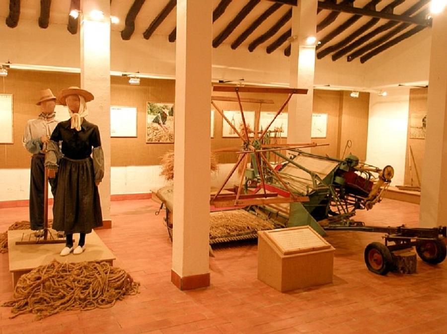 Museo Etnológico de Belchite